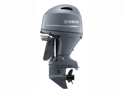 Yamaha F100FETL